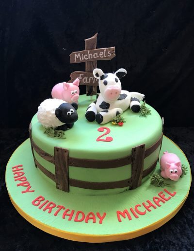 2nice2slice Childrens Birthday Cake 45