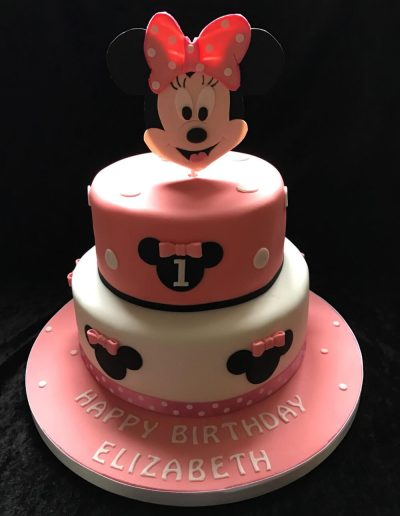2nice2slice Childrens Birthday Cake 41