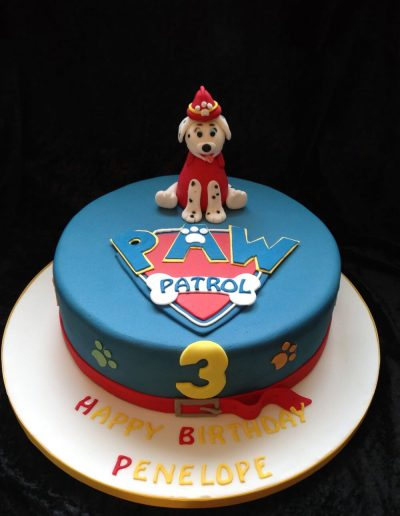 2nice2slice Childrens Birthday Cake 15