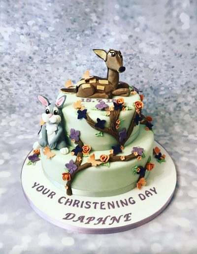 cute christening cake preston