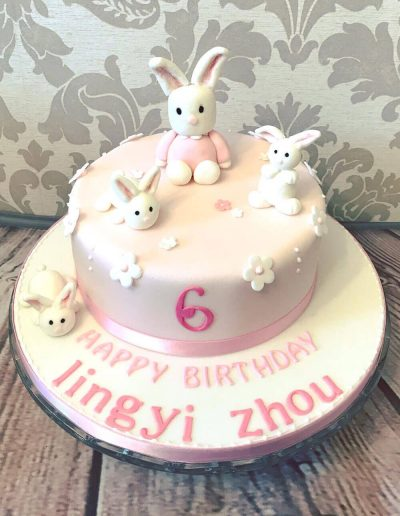 2nice2slice Childrens Birthday Cake 73